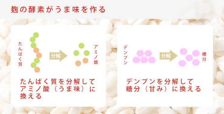 麹の酵素が旨味を作る