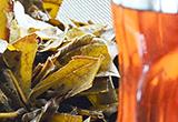 びわの葉エキスの作り方