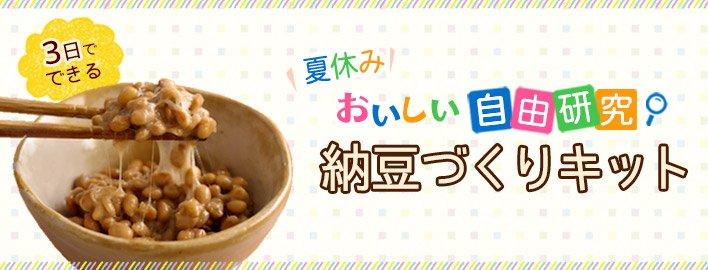 自由研究 納豆キット