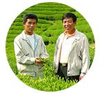 播磨園製茶