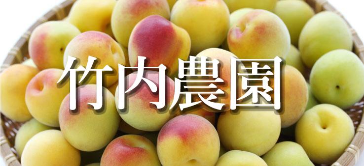 竹内農園の梅干し・生梅