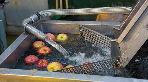 リンゴの洗浄