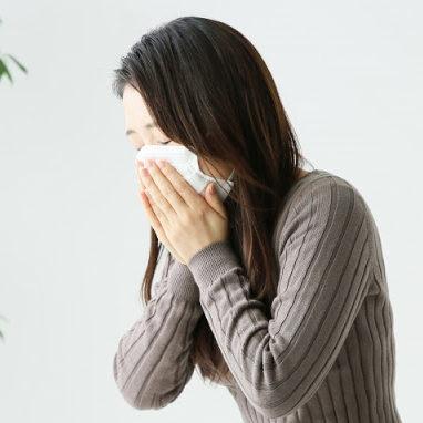 花粉症対策に乳酸菌?!