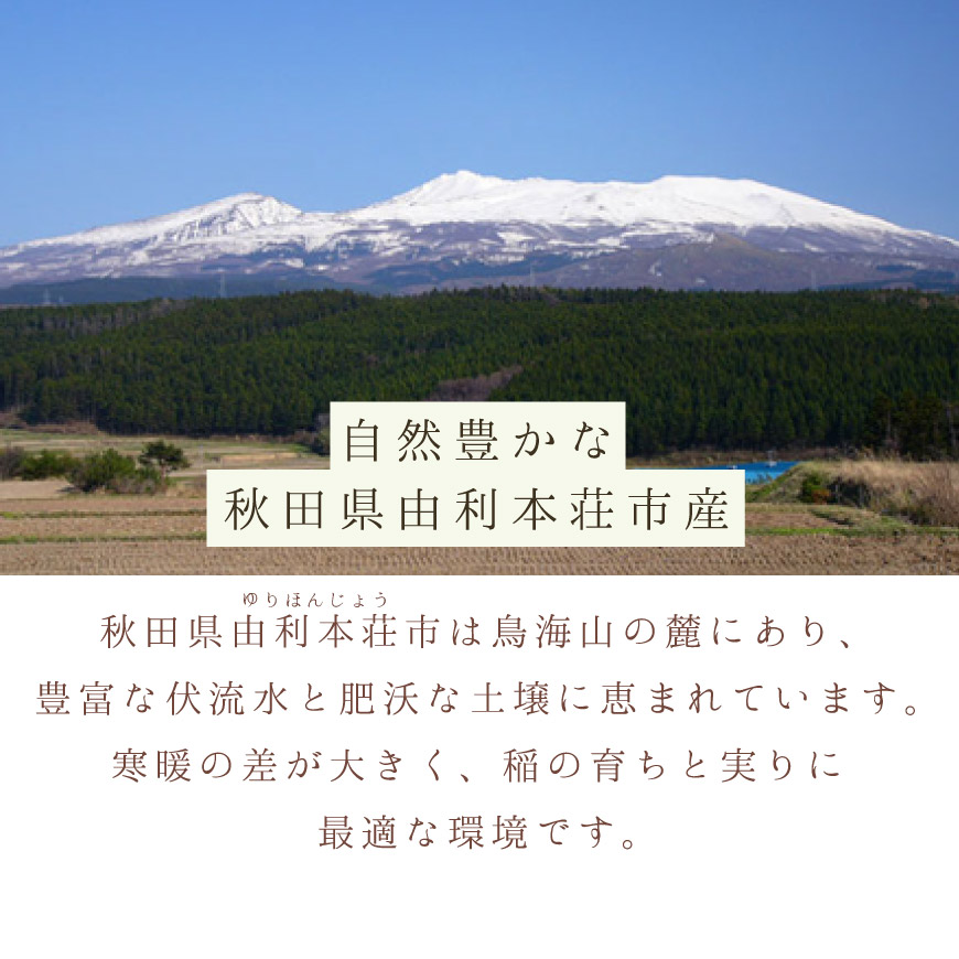 秋田県由利本荘市で生まれたお米です。