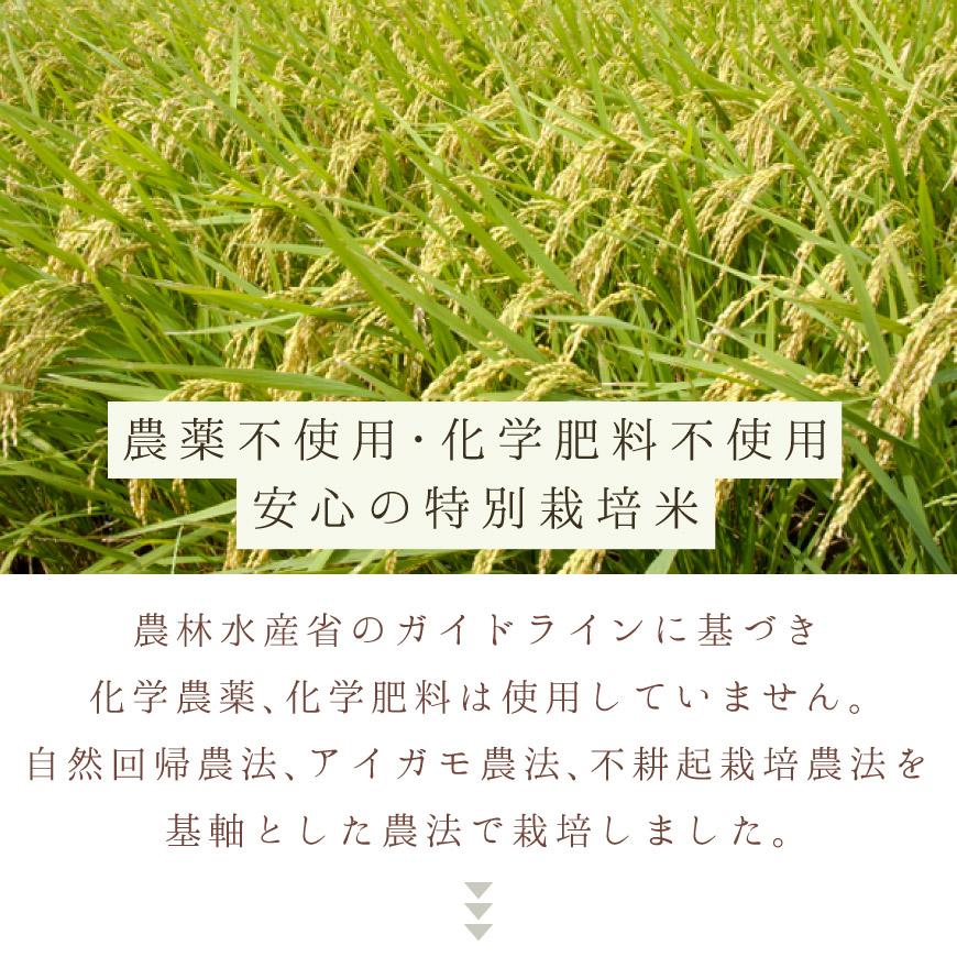 無農薬、無化学肥料の特別栽培米です。