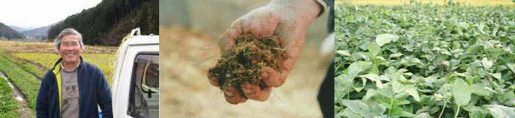 無農薬赤大豆