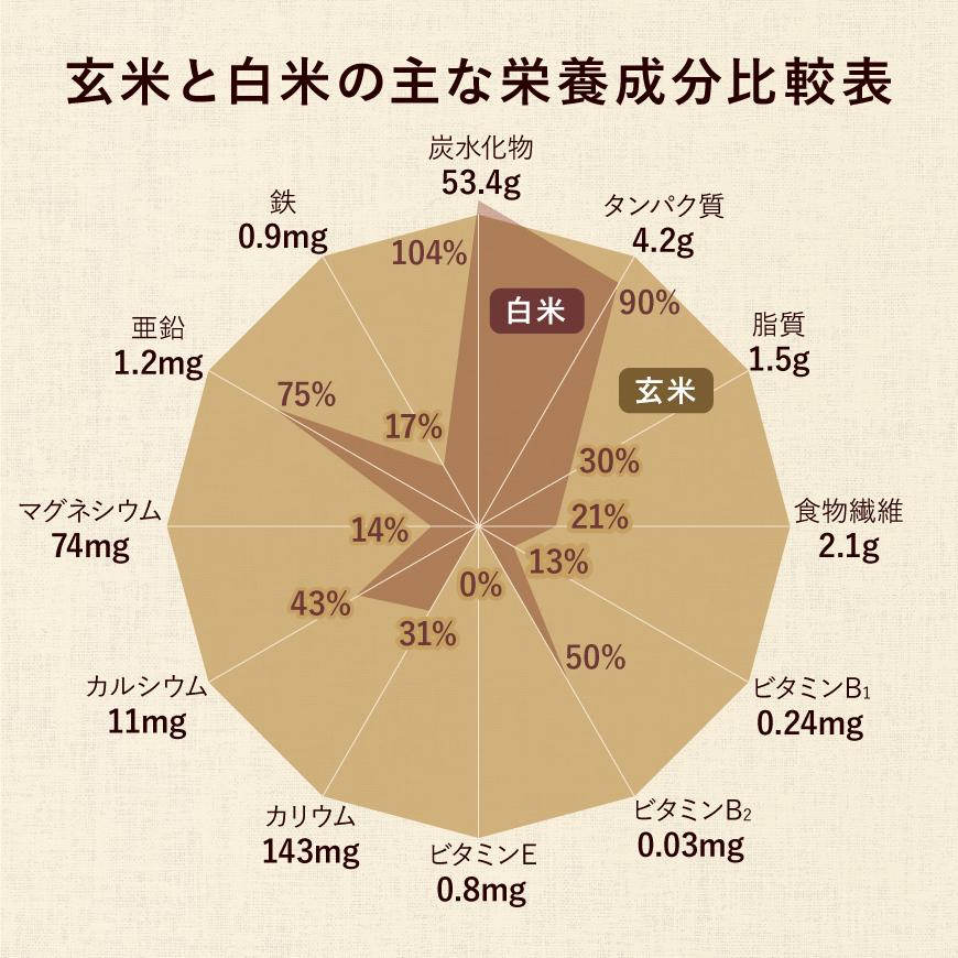 玄米と白米の主な栄養成分比較表