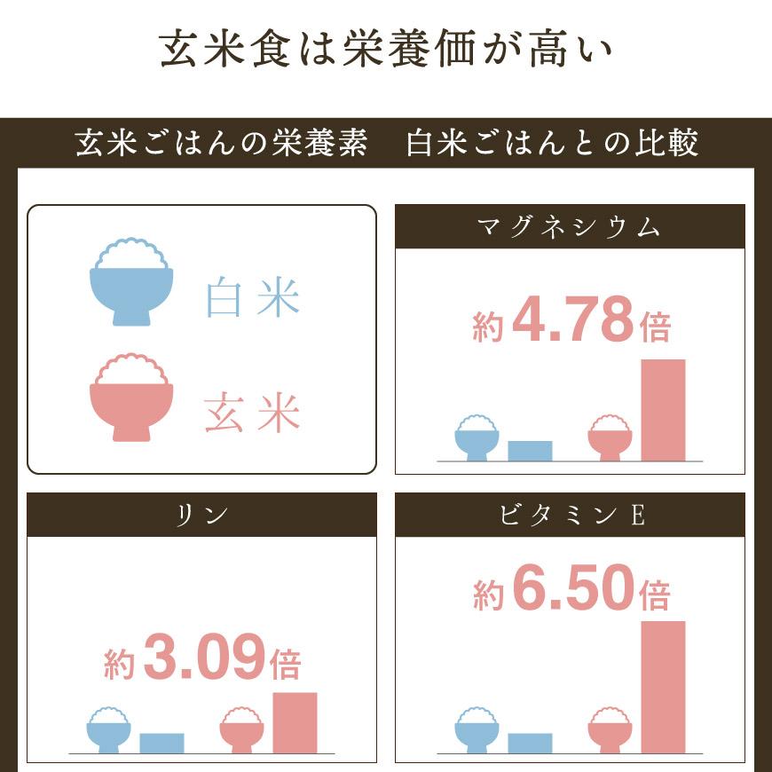 玄米食は栄養価が高い