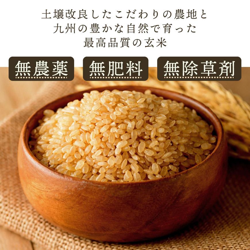 土壌改良したこだわりの農地と九州の豊かな自然でそだった最高品質の玄米