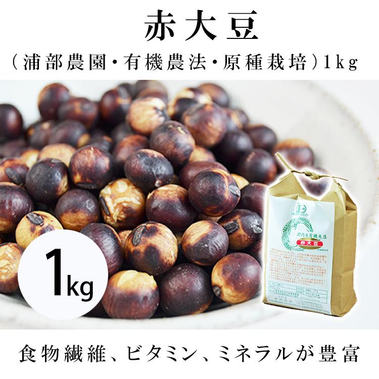 赤大豆(浦部農園・有機農法・原種栽培 1kg