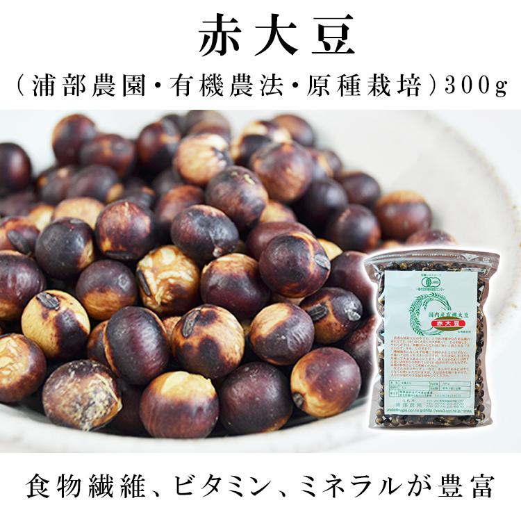 赤大豆(浦部農園・有機農法・原種栽培 300g