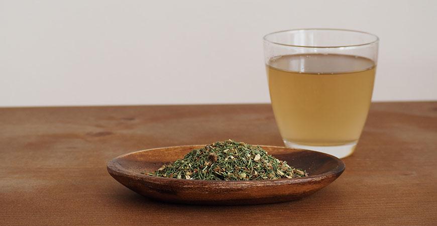 Effective Way to Drink Pine needle Tea
