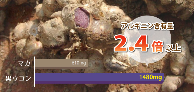 高濃度黒ウコン粉末 アレルギン含有量