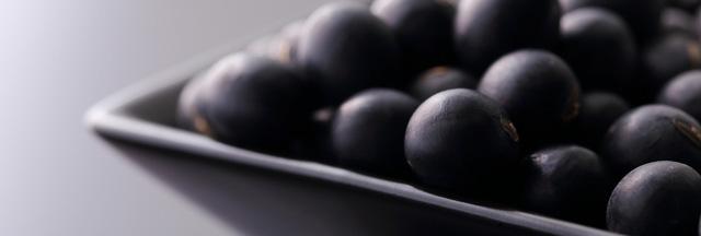 有機黒豆「黒千石」