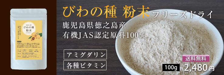 びわの種粉末100g