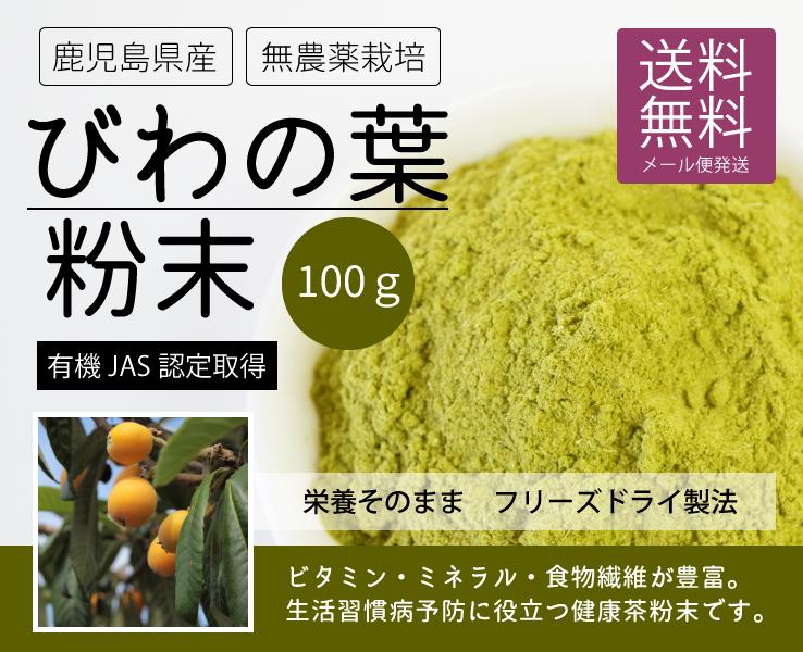 びわの葉粉末100g