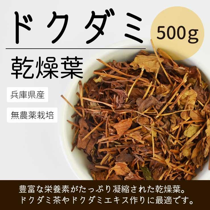 兵庫県産ドクダミ葉乾燥