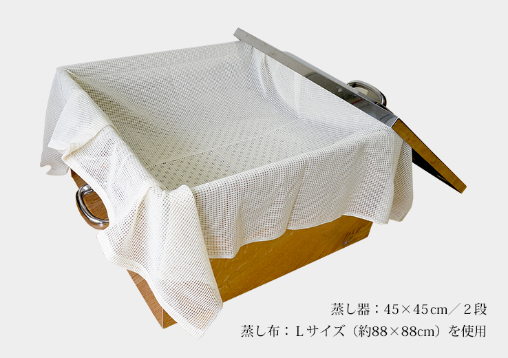 45x45cm_steamer_with_L_size_cloth