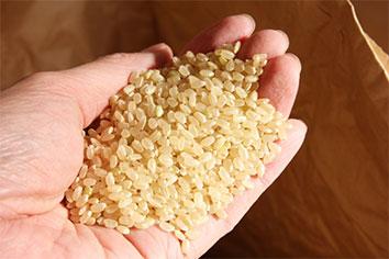 米・・・(良質な国産の有機玄米を使用)