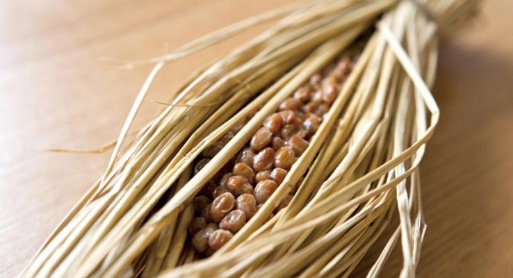 乾燥納豆の栄養素と効果