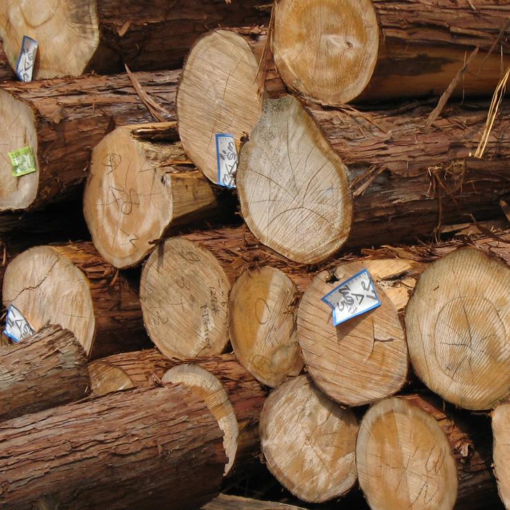 山一の木材