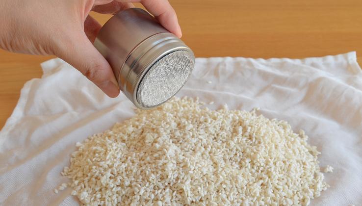 粉もの缶 種付け