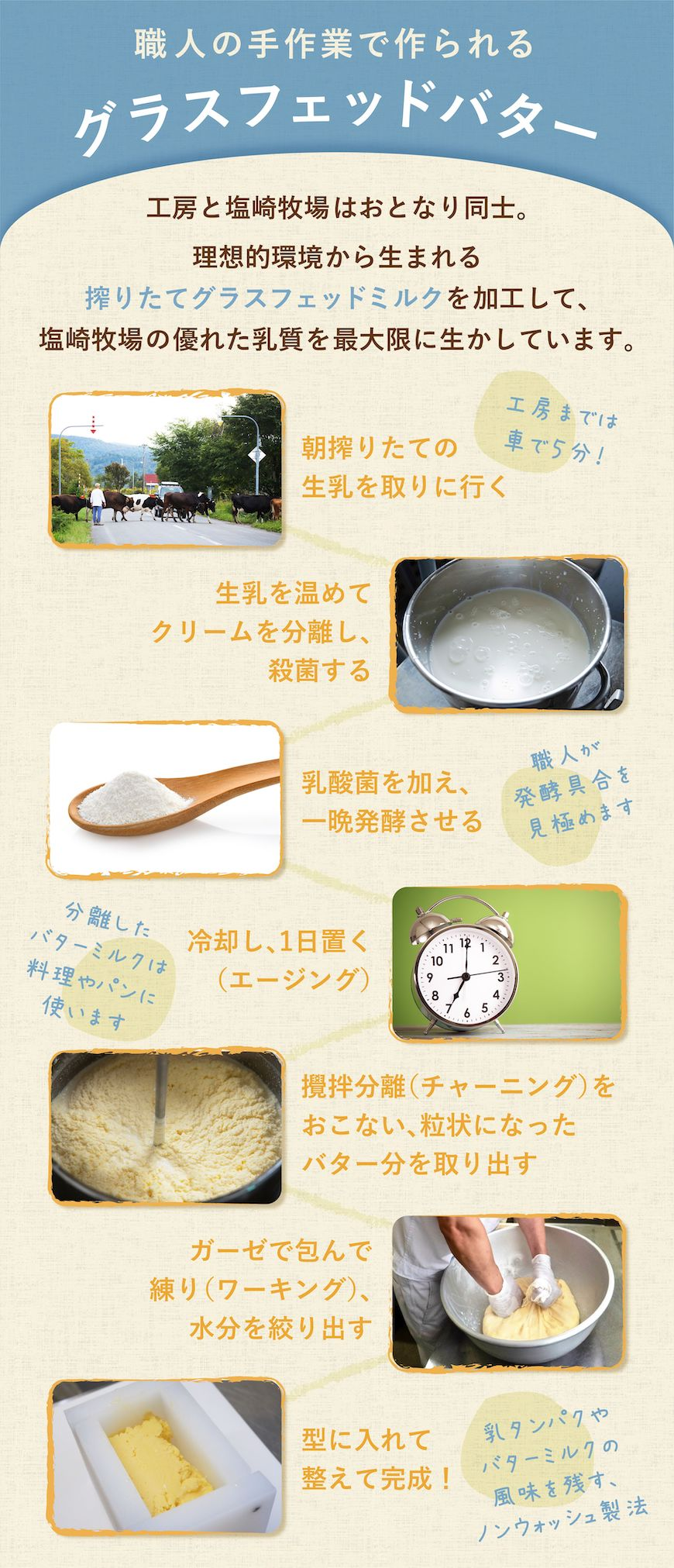 グラスフェッドバターの製造工程