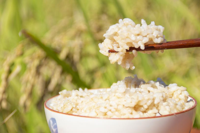 brown_rice_nutrition_header