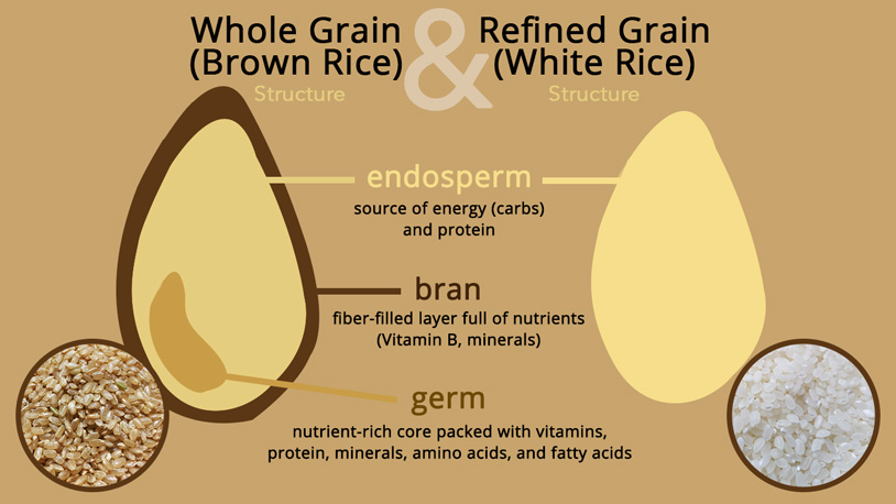 structure_brown_white_rice