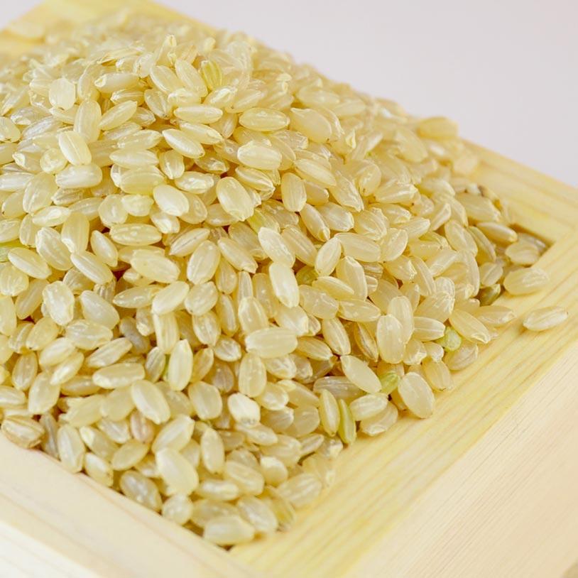 brown_rice