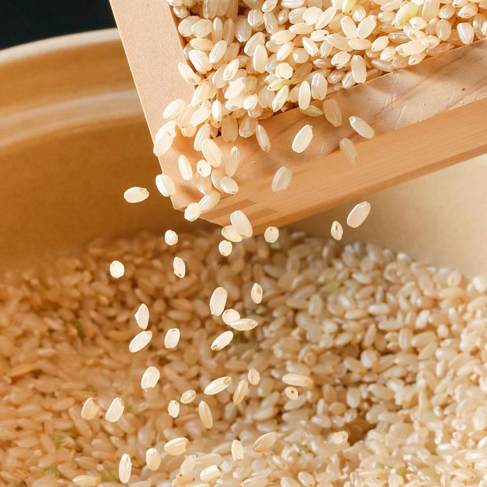 brown_rice_article