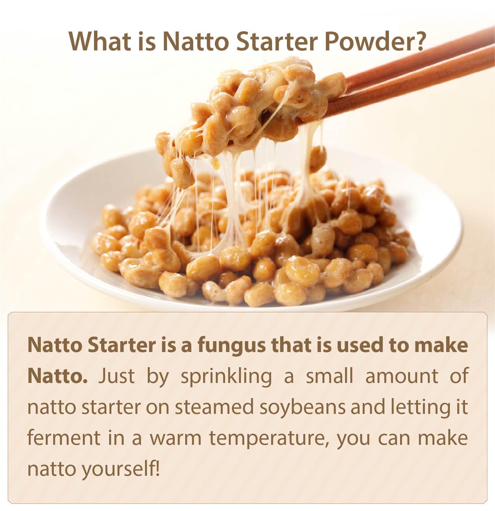What Is Natto Starter Powder?