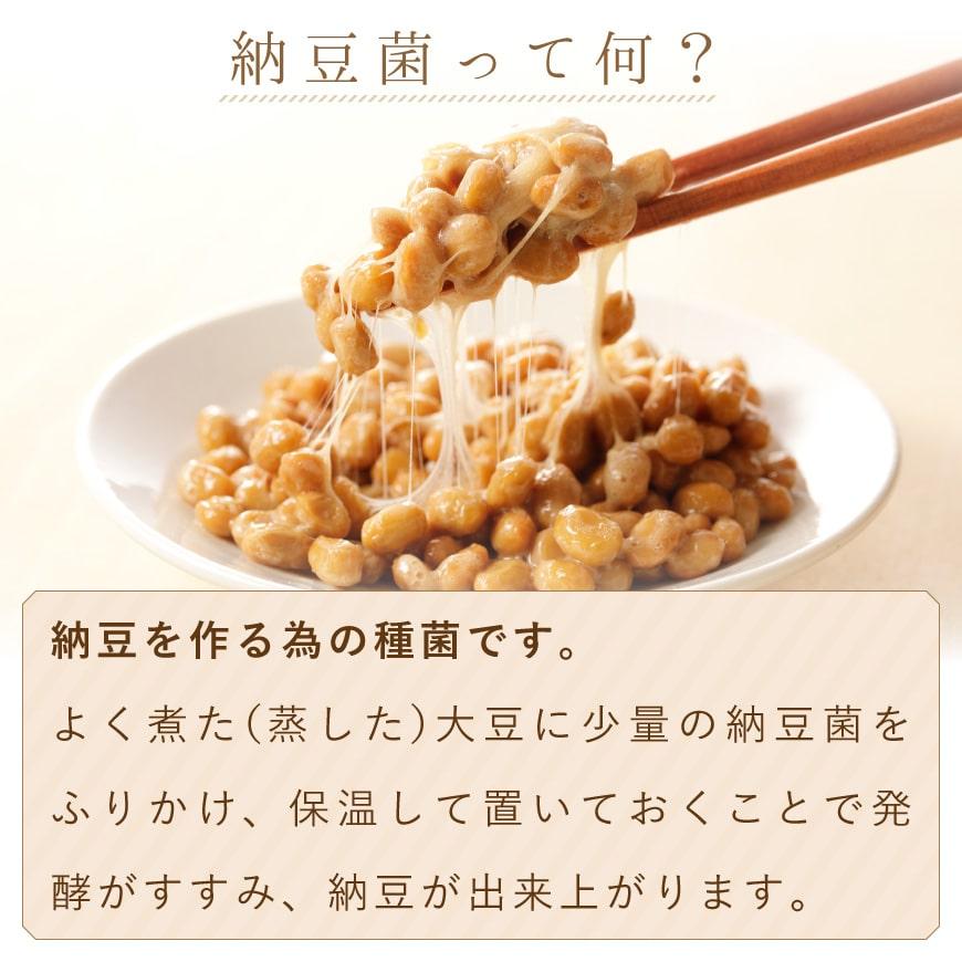 納豆菌って何?