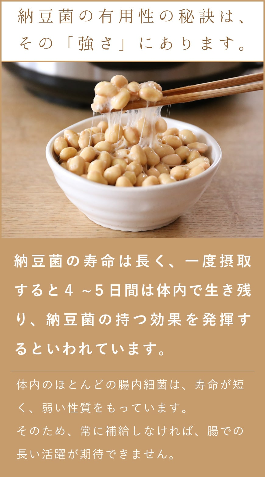 納豆菌の有用性の秘訣は、その強さにあります