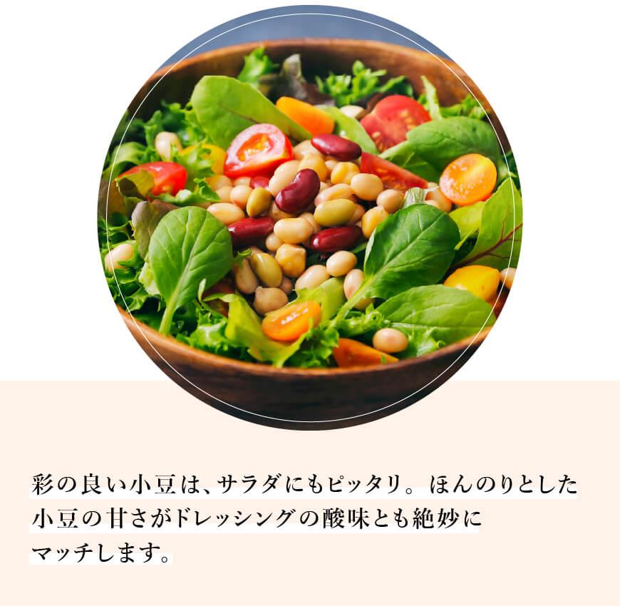 使い方:サラダ