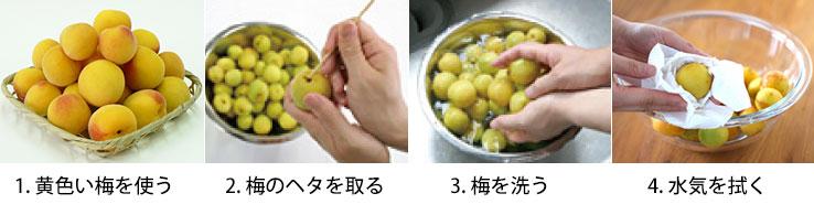 梅干しレシピ1