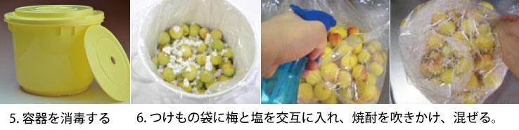 梅干しレシピ2