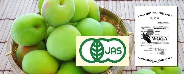 Organic JAS Certificate