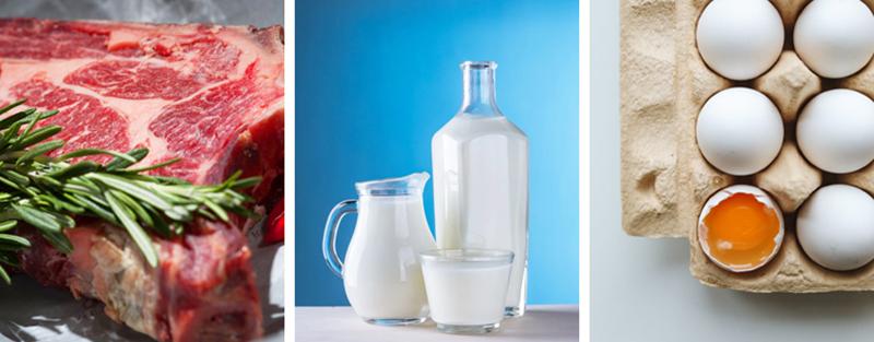 Limited Foods In Macrobiotic Diet