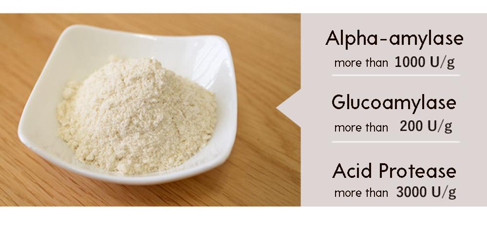 Kawashimaya lactic acid bacteria powder ingredients