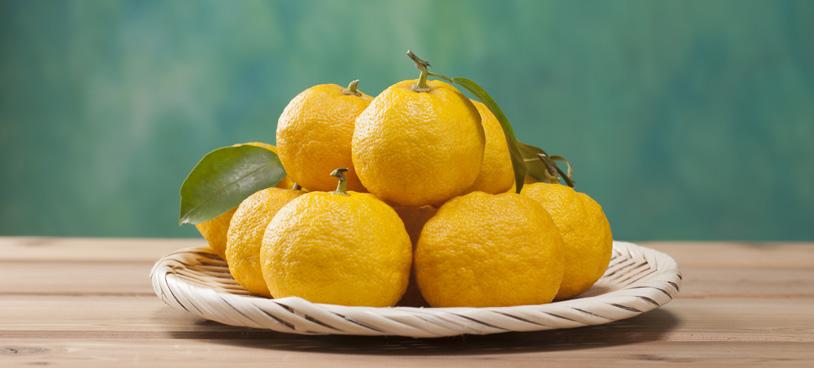 citrus_fruit