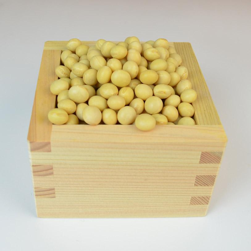 soybeanHokkaido