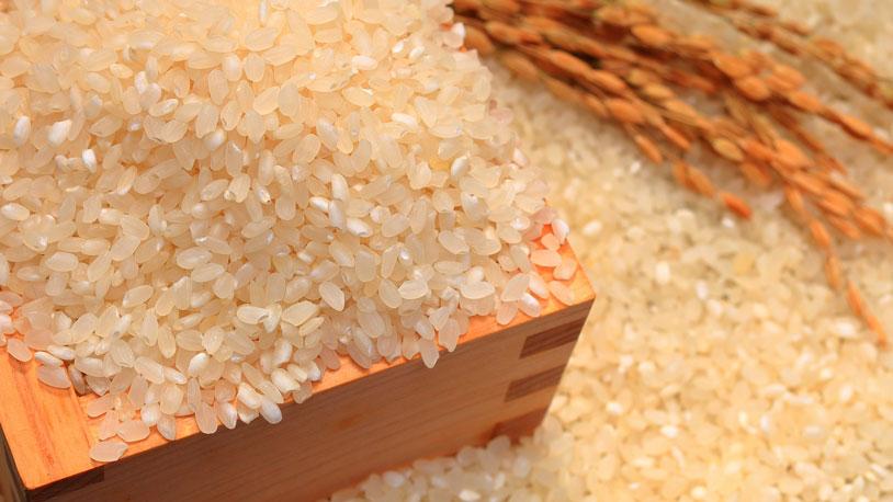 what_is_rice_vinegar