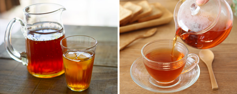 rooibos_ice_hot