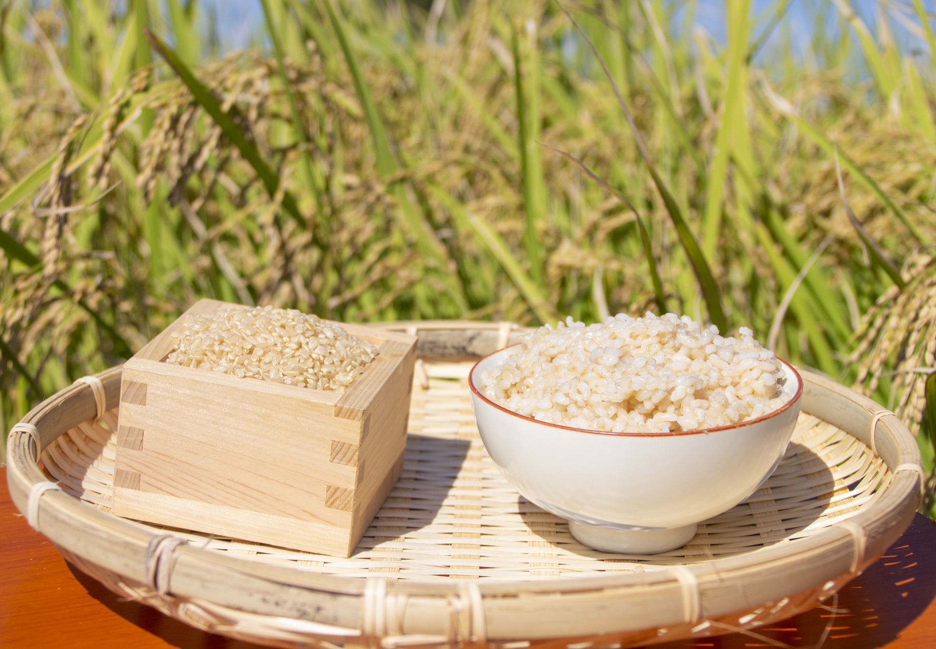sprouted_brown_rice