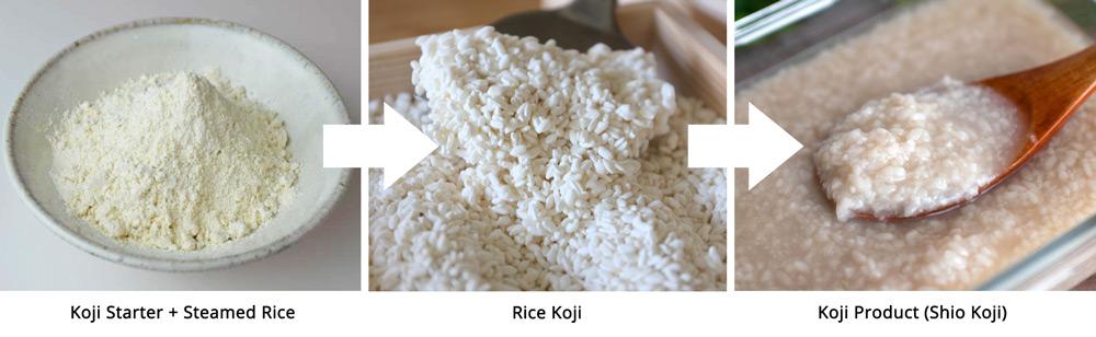 koji_rice_koji_koji_products
