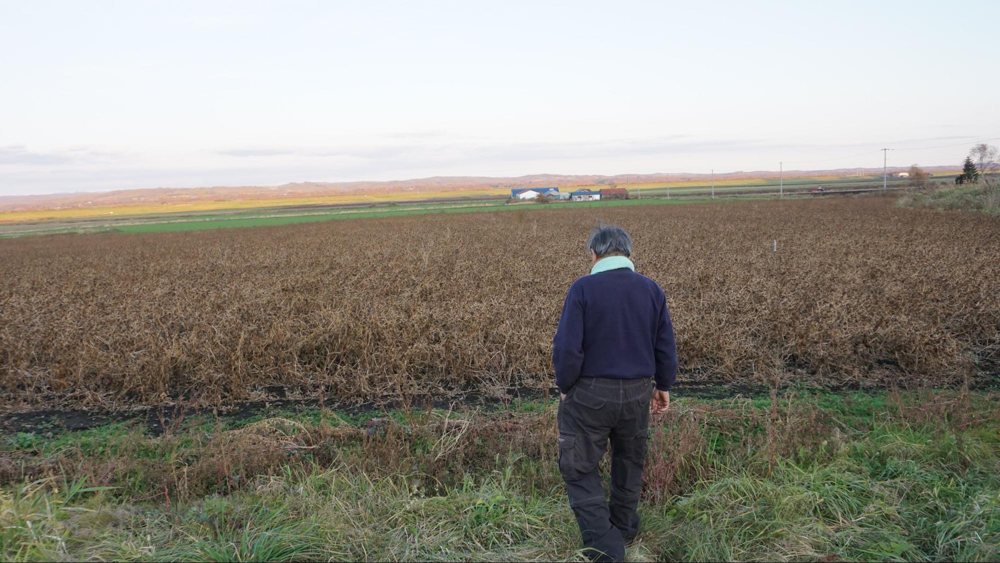Q農業をはじめられてどれぐらいになりますか