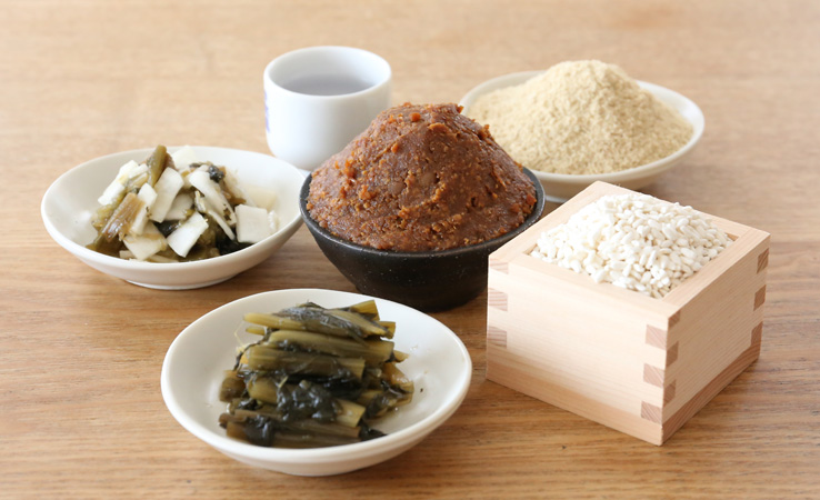 腸内環境を整える発酵食品