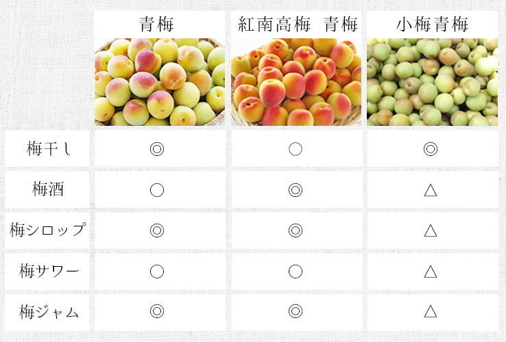 梅の種類別の用途